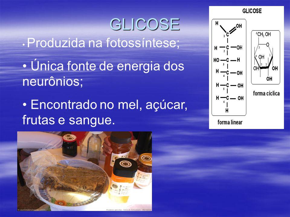 GLICOSE Única fonte de energia dos neurônios;