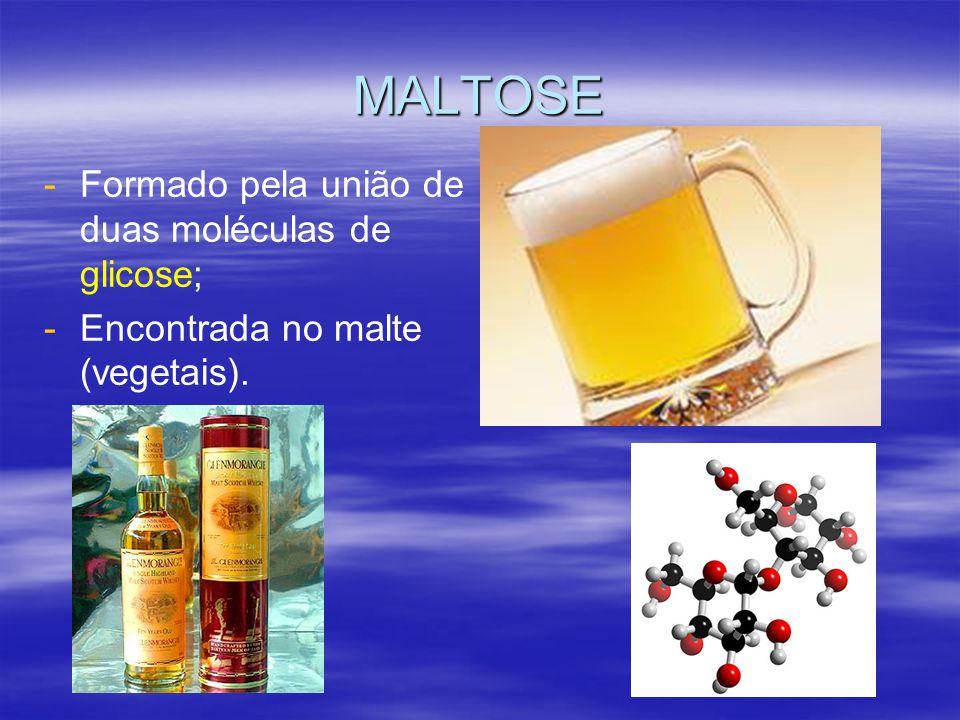 MALTOSE Formado pela união de duas moléculas de glicose;