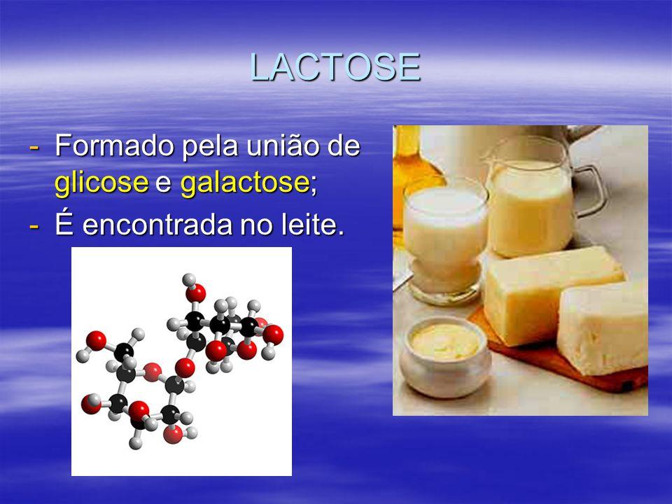 LACTOSE Formado pela união de glicose e galactose;