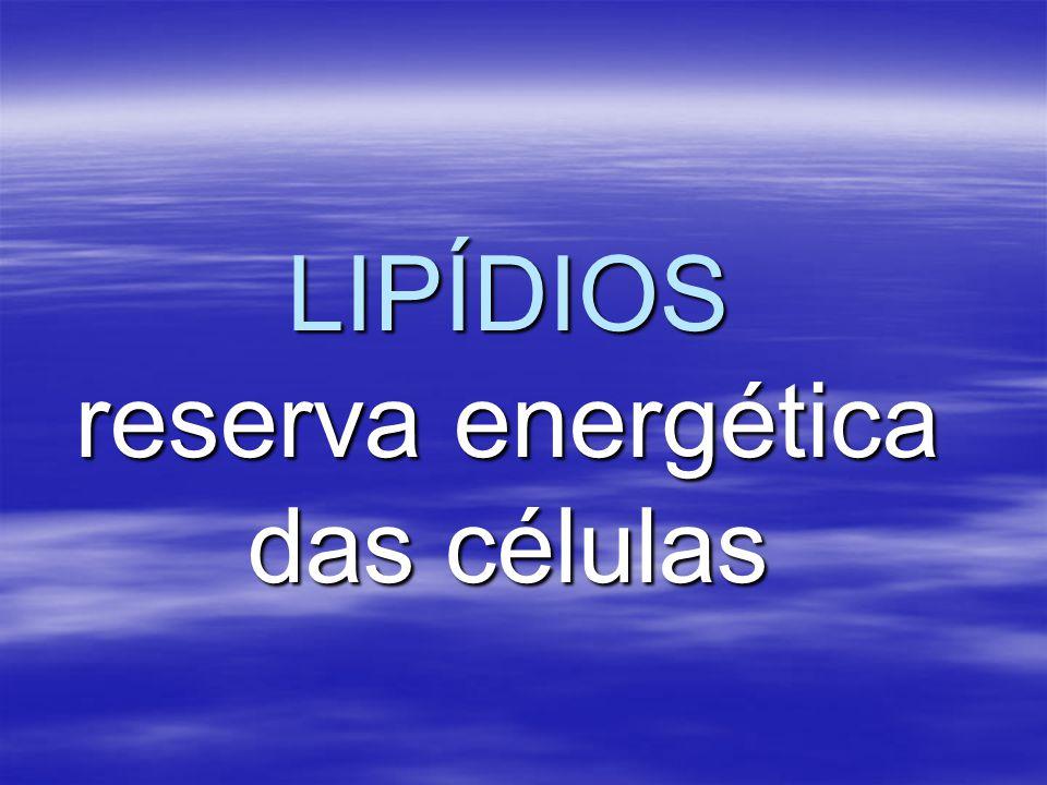 LIPÍDIOS reserva energética das células