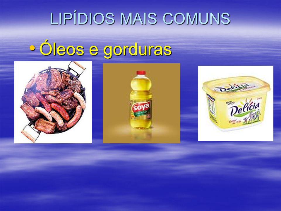 LIPÍDIOS MAIS COMUNS Óleos e gorduras
