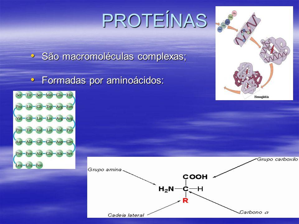 PROTEÍNAS São macromoléculas complexas; Formadas por aminoácidos:
