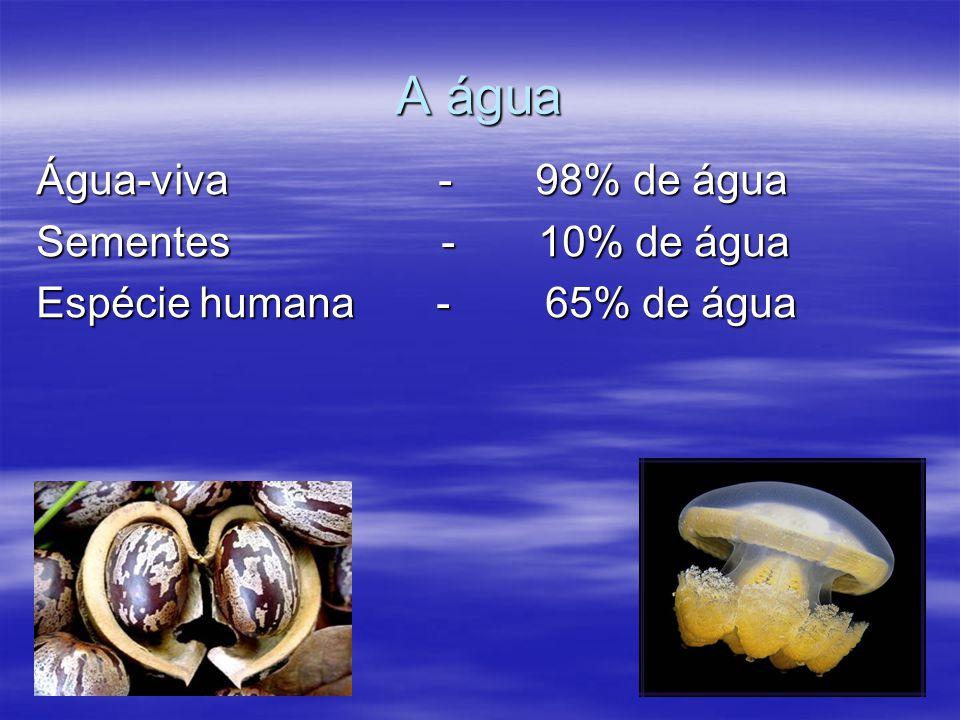 A água Água-viva - 98% de água Sementes - 10% de água