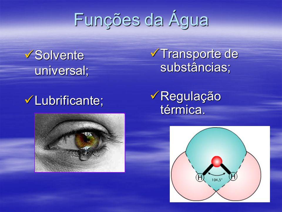 Funções da Água Solvente universal; Lubrificante;