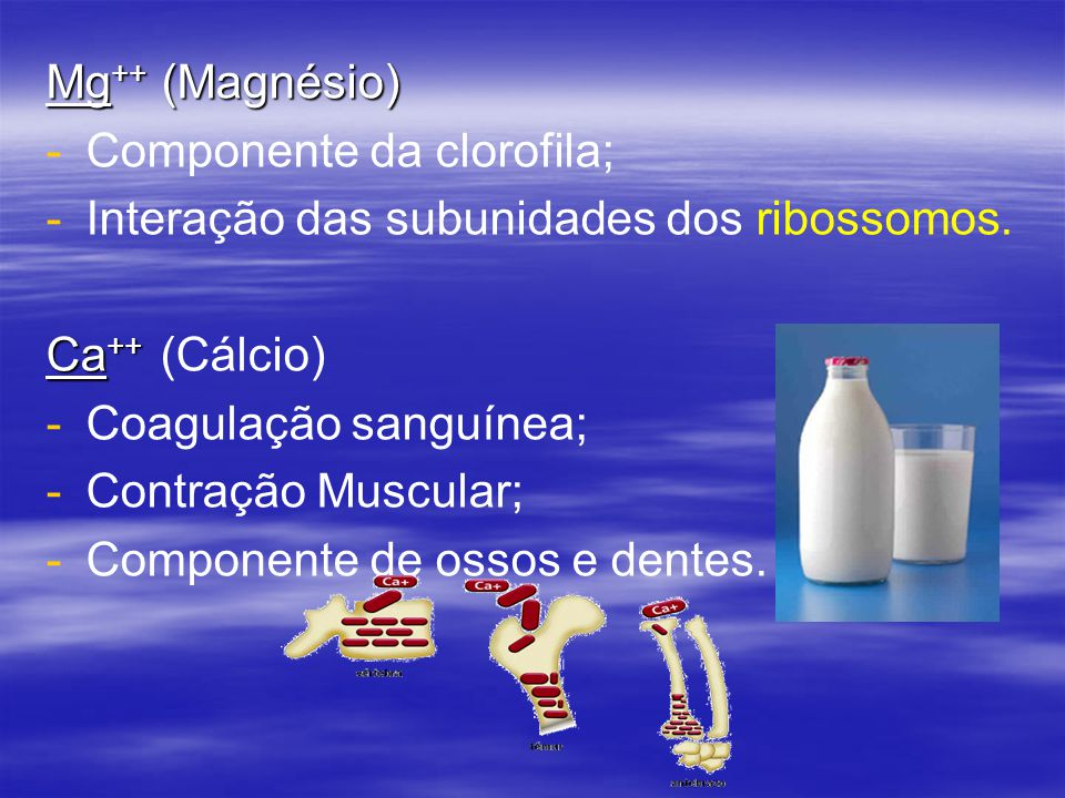 Mg++ (Magnésio) Componente da clorofila; Interação das subunidades dos ribossomos. Ca++ (Cálcio)