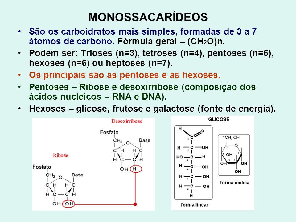 MONOSSACARÍDEOS São os carboidratos mais simples, formadas de 3 a 7 átomos de carbono. Fórmula geral – (CH2O)n.