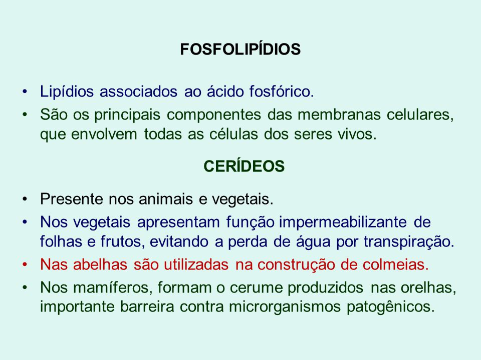 FOSFOLIPÍDIOS Lipídios associados ao ácido fosfórico.