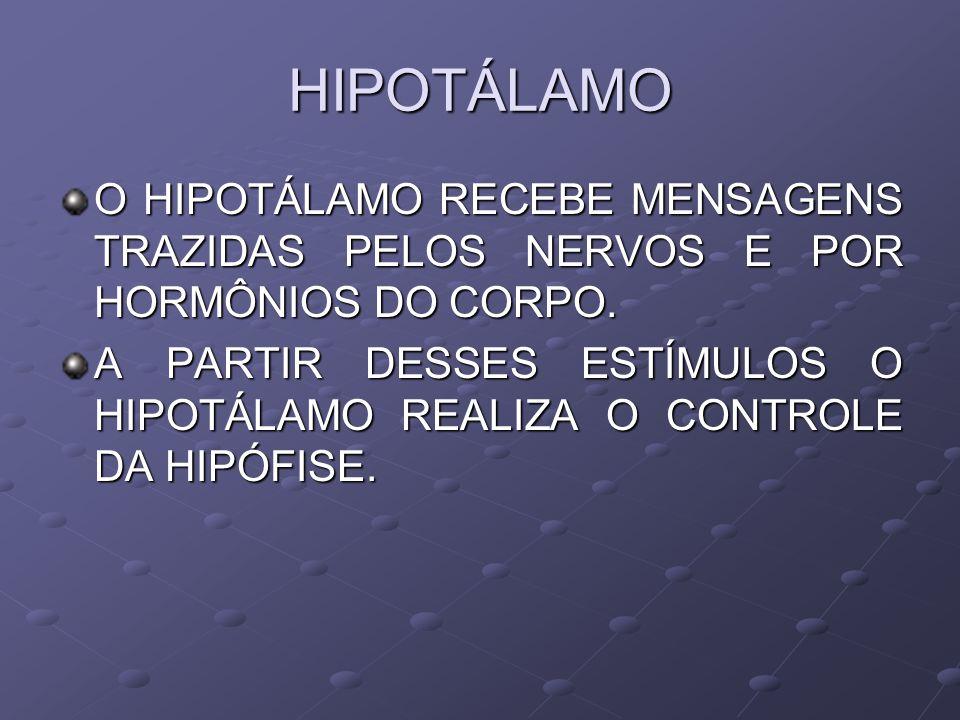 HIPOTÁLAMO O HIPOTÁLAMO RECEBE MENSAGENS TRAZIDAS PELOS NERVOS E POR HORMÔNIOS DO CORPO.