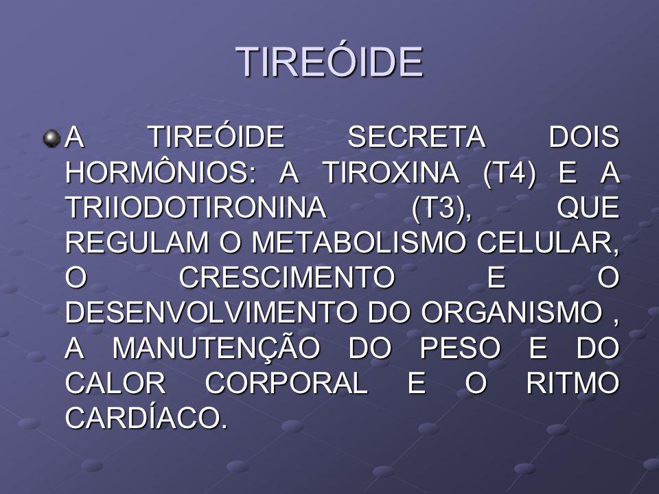 TIREÓIDE