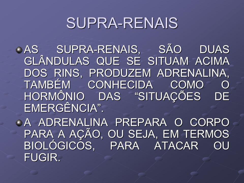 SUPRA-RENAIS