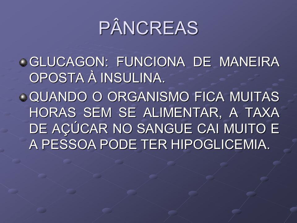 PÂNCREAS GLUCAGON: FUNCIONA DE MANEIRA OPOSTA À INSULINA.