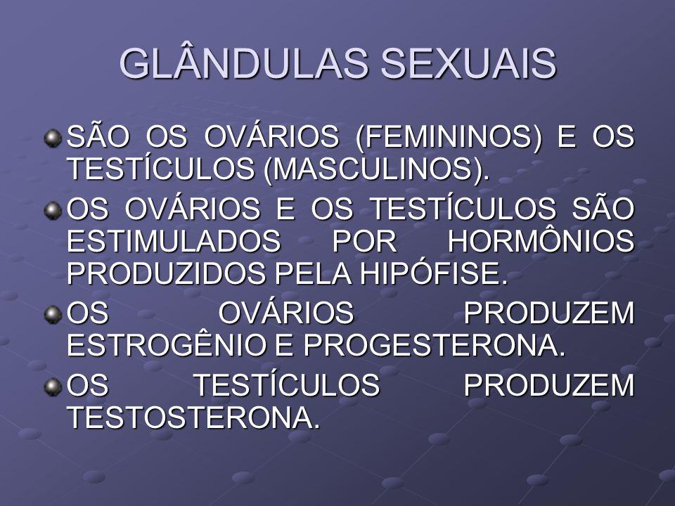 GLÂNDULAS SEXUAIS SÃO OS OVÁRIOS (FEMININOS) E OS TESTÍCULOS (MASCULINOS).