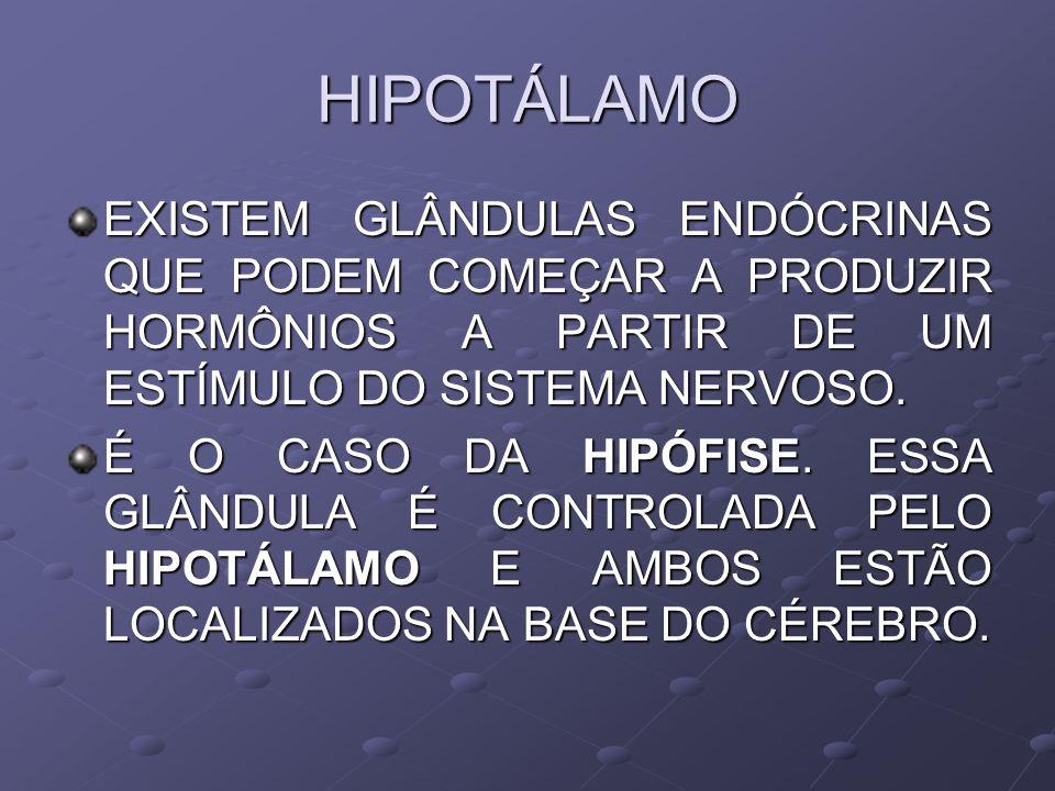 HIPOTÁLAMO EXISTEM GLÂNDULAS ENDÓCRINAS QUE PODEM COMEÇAR A PRODUZIR HORMÔNIOS A PARTIR DE UM ESTÍMULO DO SISTEMA NERVOSO.