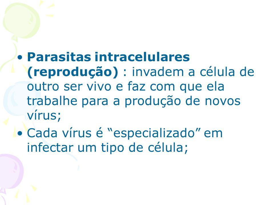 Parasitas intracelulares (reprodução) : invadem a célula de outro ser vivo e faz com que ela trabalhe para a produção de novos vírus;