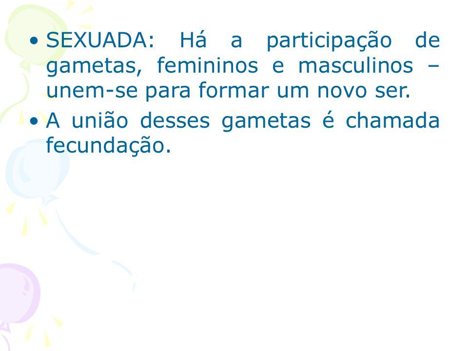 SEXUADA: Há a participação de gametas, femininos e masculinos – unem-se para formar um novo ser.