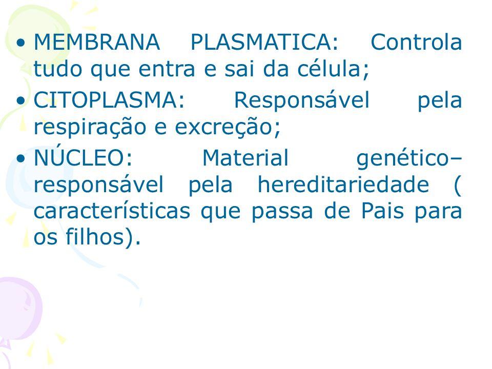 MEMBRANA PLASMATICA: Controla tudo que entra e sai da célula;