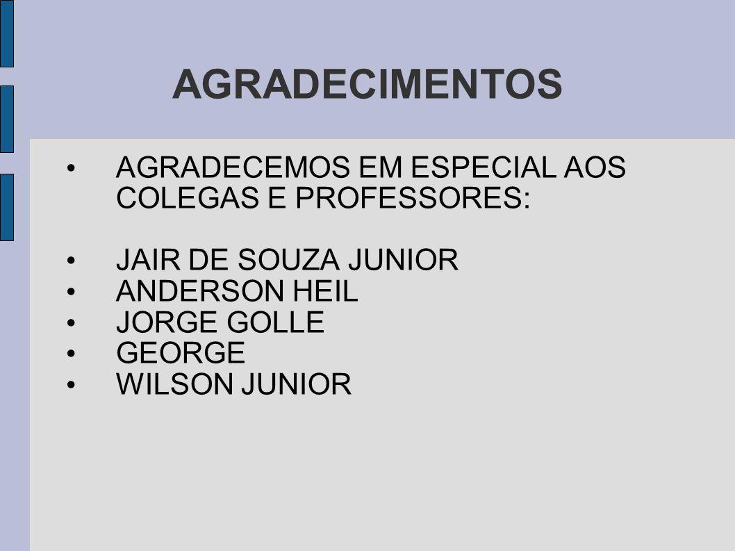 AGRADECIMENTOS AGRADECEMOS EM ESPECIAL AOS COLEGAS E PROFESSORES:
