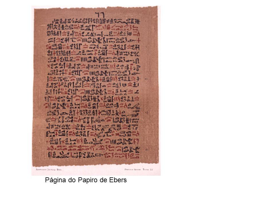 Página do Papiro de Ebers