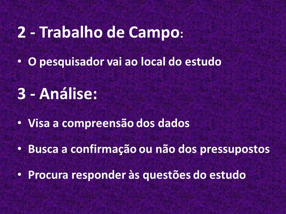2 - Trabalho de Campo: 3 - Análise: