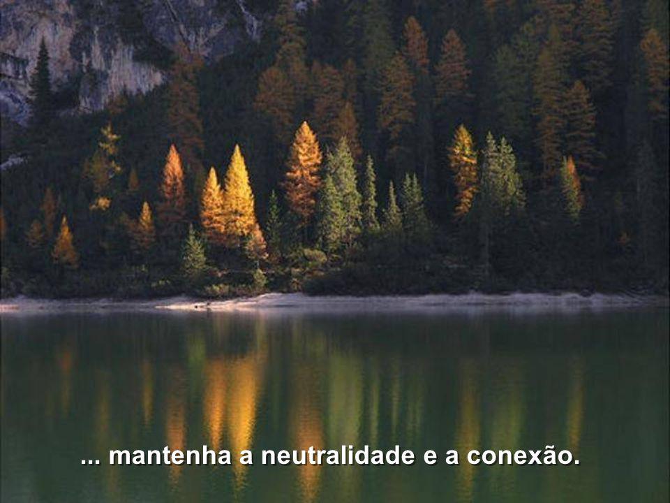 ... mantenha a neutralidade e a conexão.