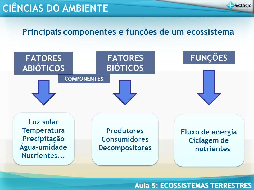 Principais componentes e funções de um ecossistema