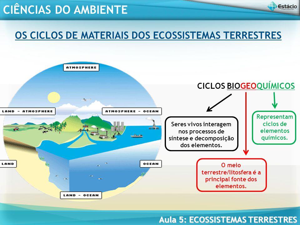 OS CICLOS DE MATERIAIS DOS ECOSSISTEMAS TERRESTRES