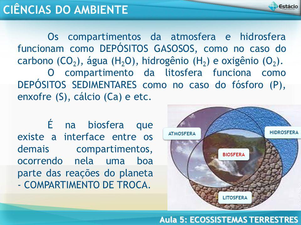 Os compartimentos da atmosfera e hidrosfera funcionam como DEPÓSITOS GASOSOS, como no caso do carbono (CO2), água (H2O), hidrogênio (H2) e oxigênio (O2).