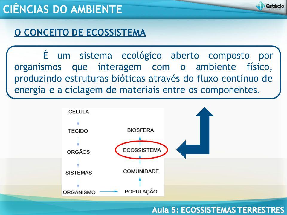 O CONCEITO DE ECOSSISTEMA