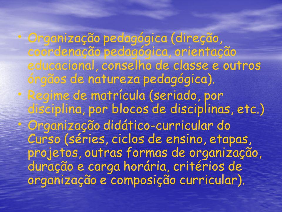Organização pedagógica (direção, coordenação pedagógica, orientação educacional, conselho de classe e outros órgãos de natureza pedagógica).