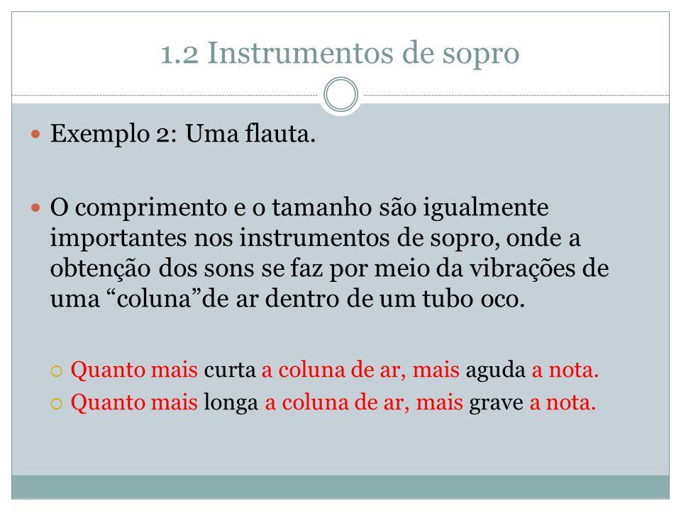 1.2 Instrumentos de sopro Exemplo 2: Uma flauta.