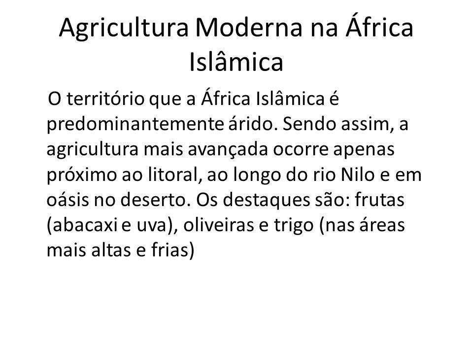 Agricultura Moderna na África Islâmica