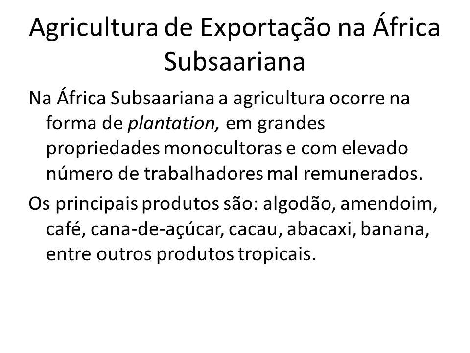 Agricultura de Exportação na África Subsaariana