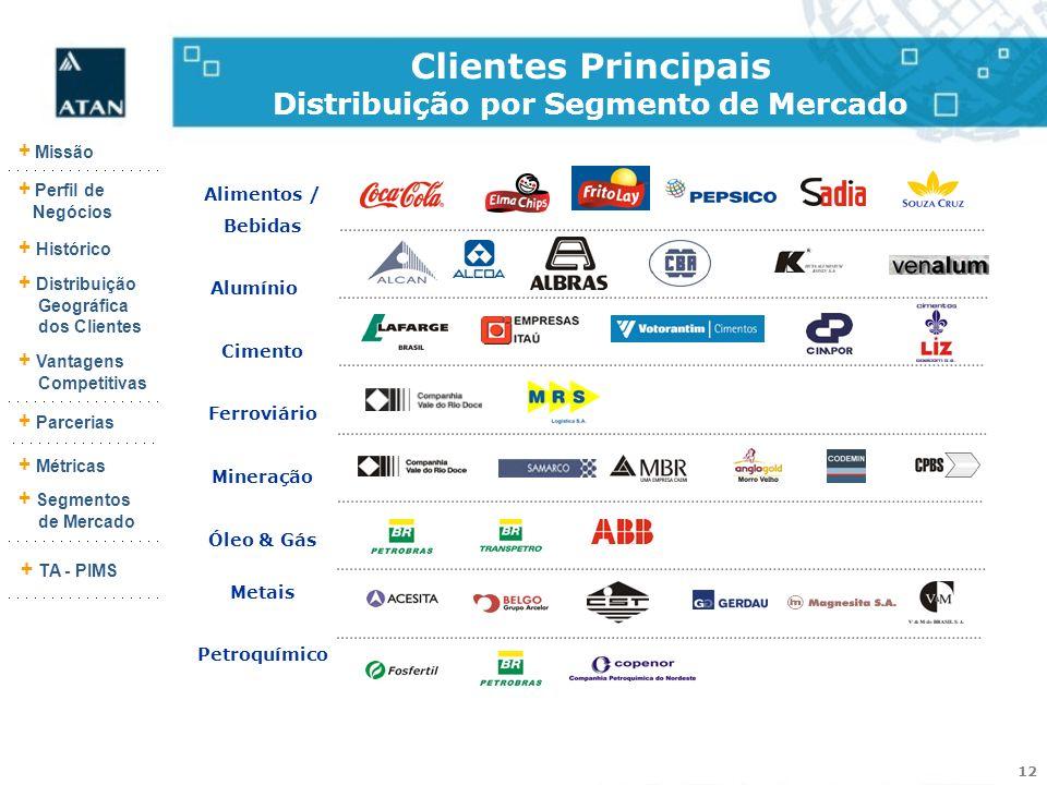 Clientes Principais Distribuição por Segmento de Mercado