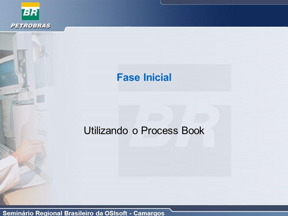 Utilizando o Process Book