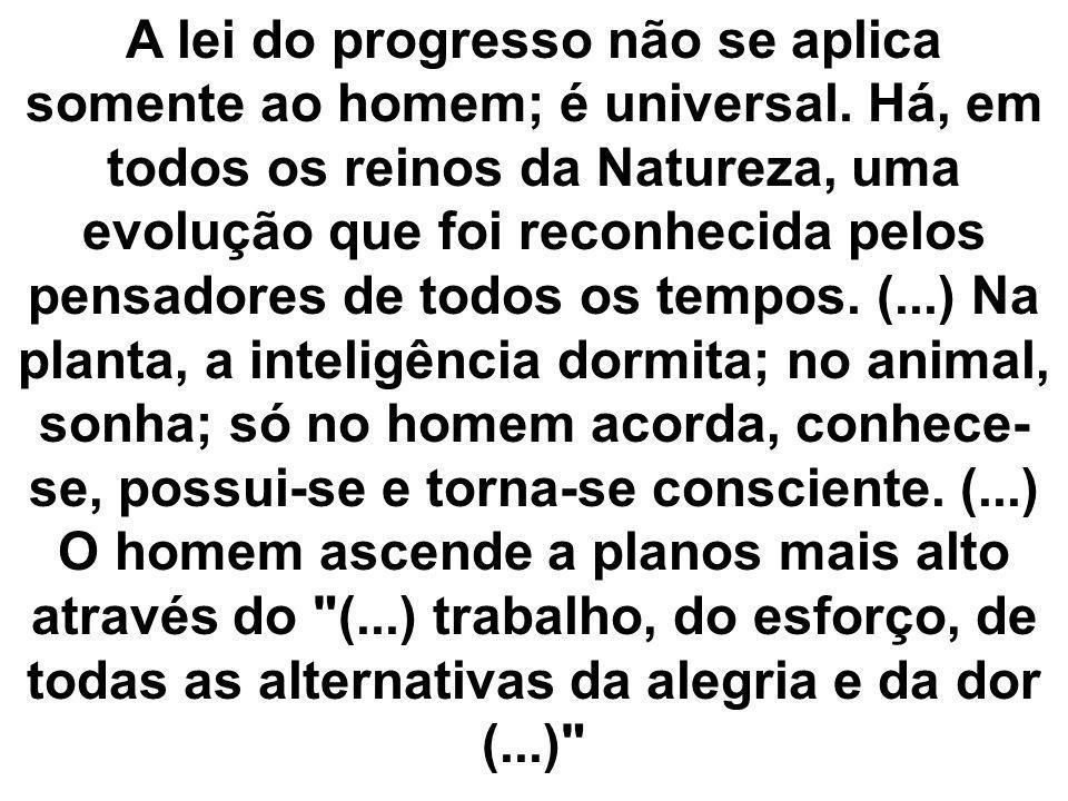 A lei do progresso não se aplica somente ao homem; é universal