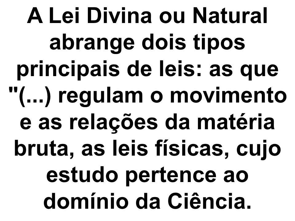 A Lei Divina ou Natural abrange dois tipos principais de leis: as que (...) regulam o movimento e as relações da matéria bruta, as leis físicas, cujo estudo pertence ao domínio da Ciência.