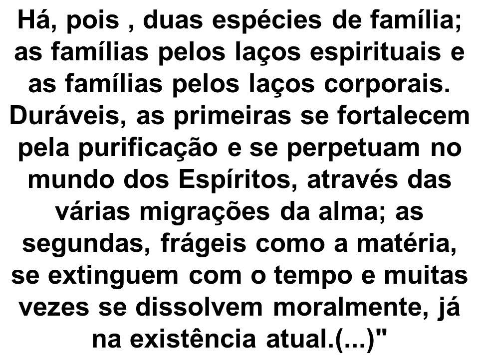 Há, pois , duas espécies de família; as famílias pelos laços espirituais e as famílias pelos laços corporais.