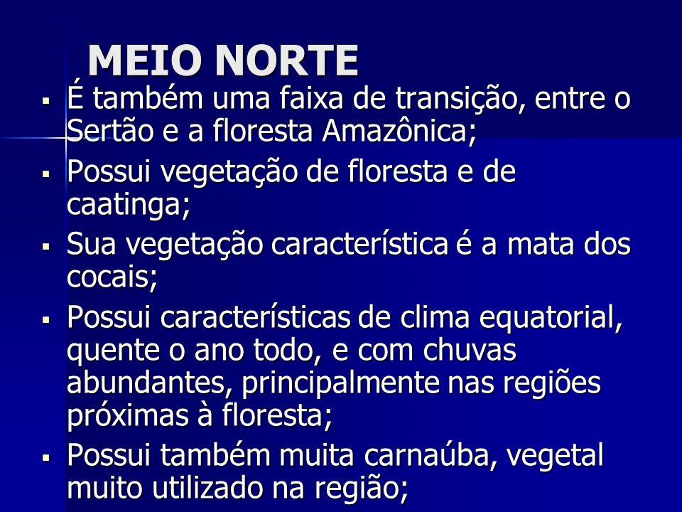 MEIO NORTE É também uma faixa de transição, entre o Sertão e a floresta Amazônica; Possui vegetação de floresta e de caatinga;