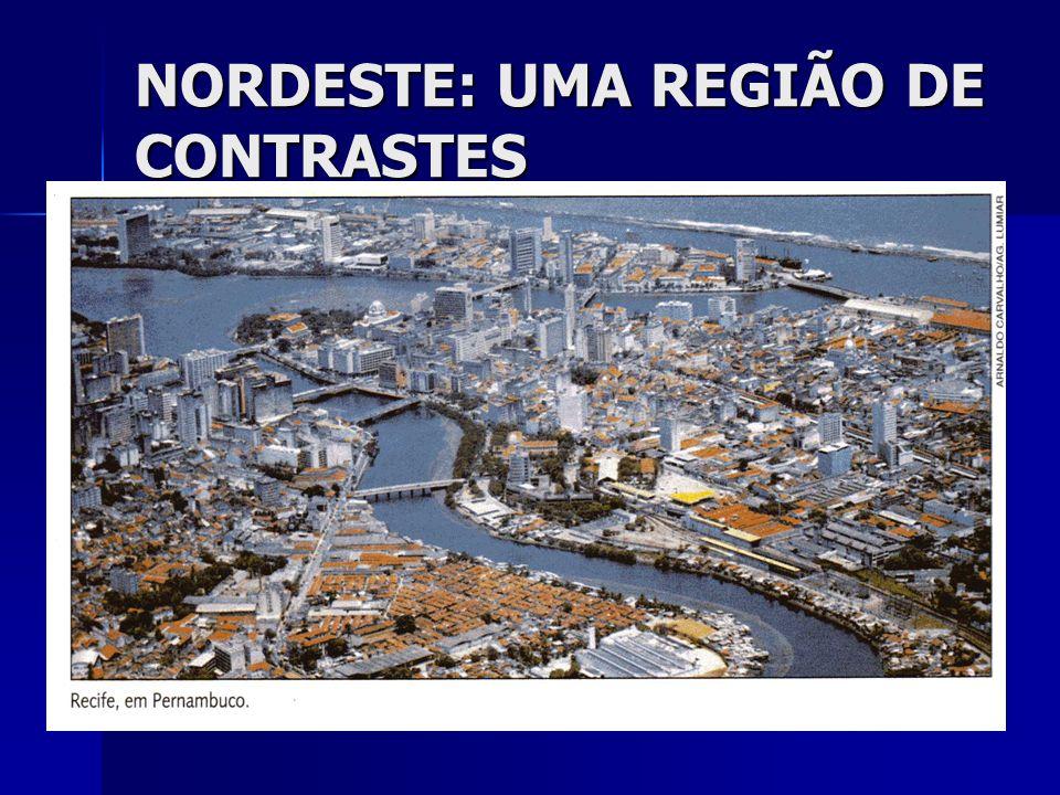 NORDESTE: UMA REGIÃO DE CONTRASTES