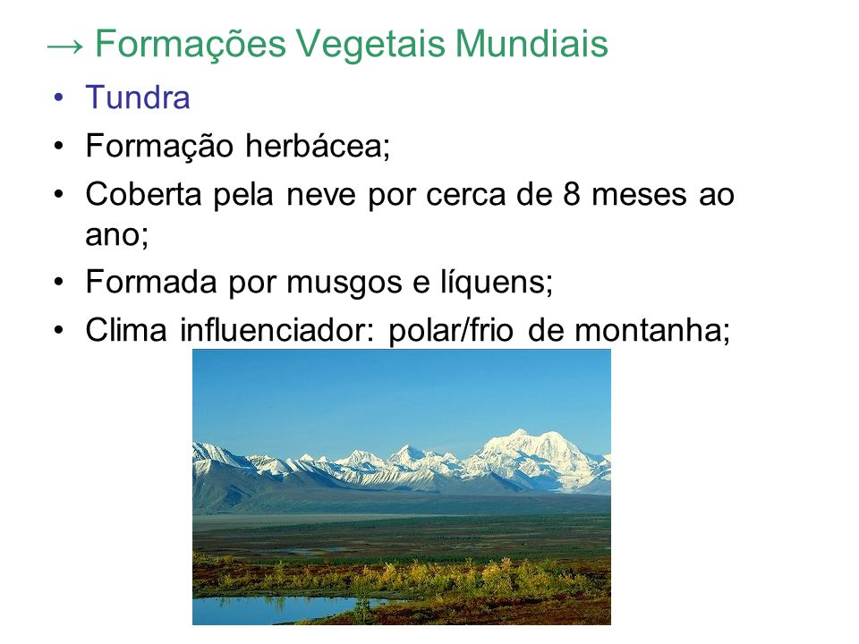 → Formações Vegetais Mundiais