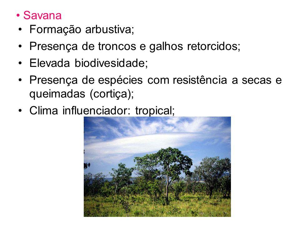 Savana Formação arbustiva; Presença de troncos e galhos retorcidos; Elevada biodivesidade;