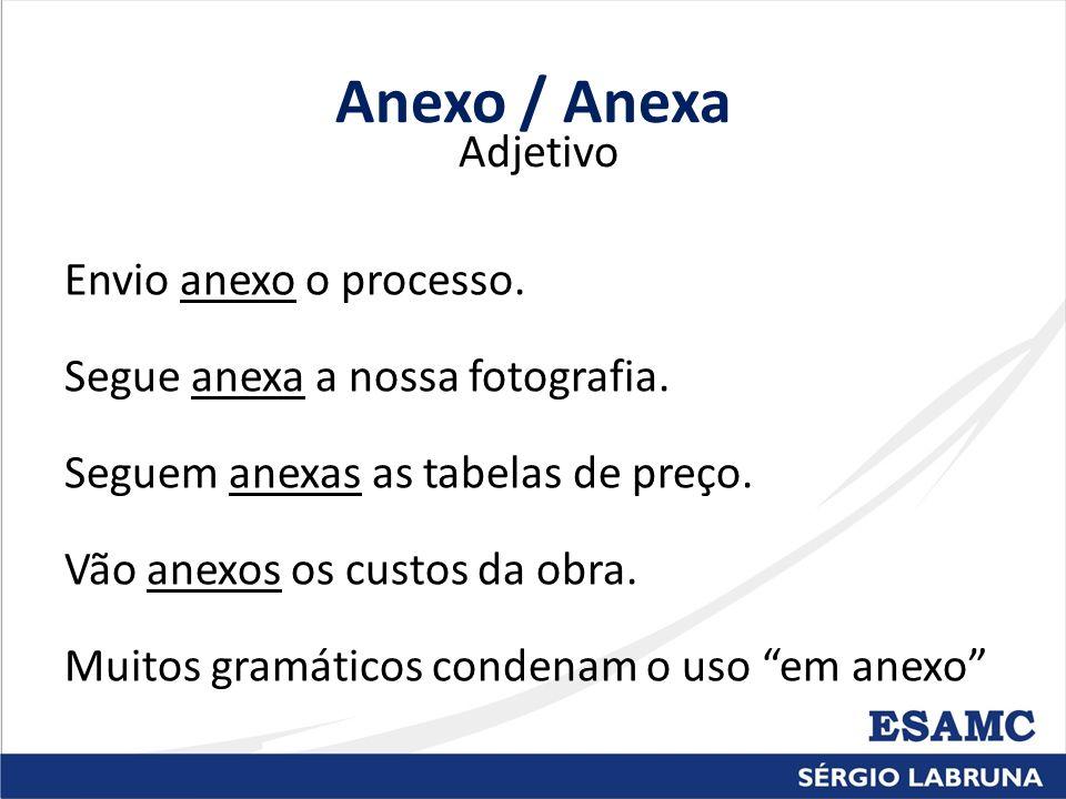 Anexo / Anexa Adjetivo