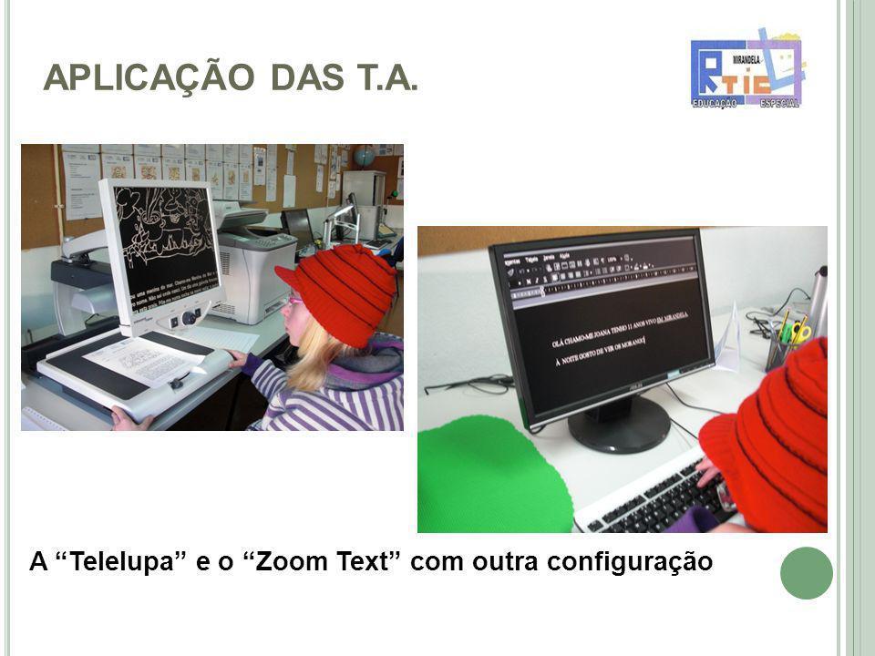 APLICAÇÃO DAS T.A. A Telelupa e o Zoom Text com outra configuração