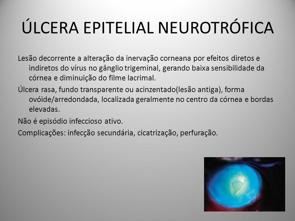 ÚLCERA EPITELIAL NEUROTRÓFICA