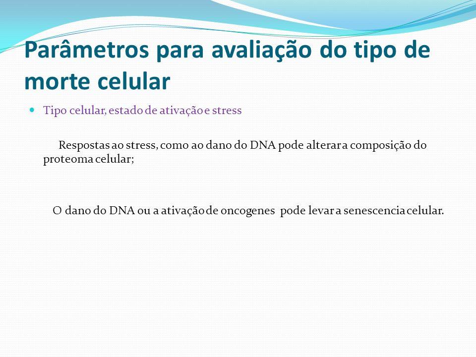 Parâmetros para avaliação do tipo de morte celular