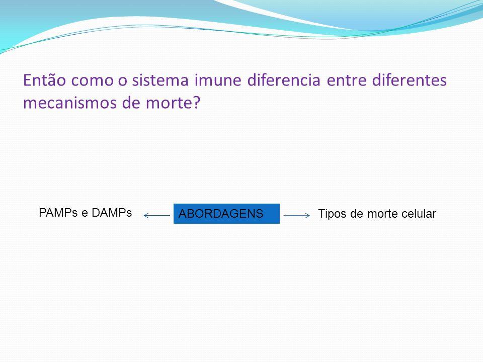Então como o sistema imune diferencia entre diferentes mecanismos de morte