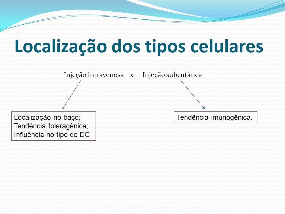 Localização dos tipos celulares