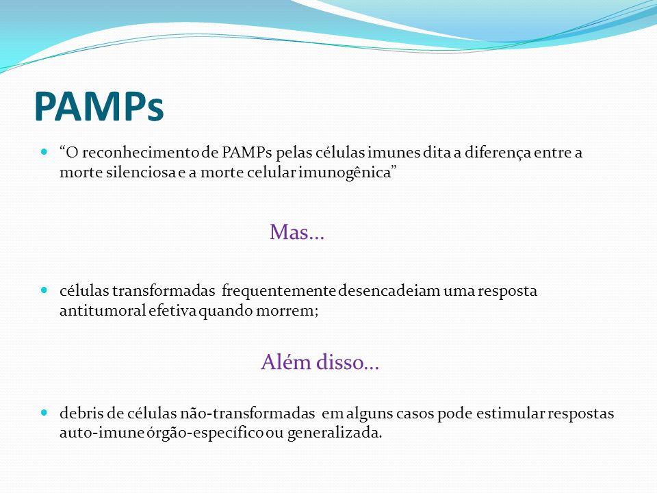 PAMPs O reconhecimento de PAMPs pelas células imunes dita a diferença entre a morte silenciosa e a morte celular imunogênica