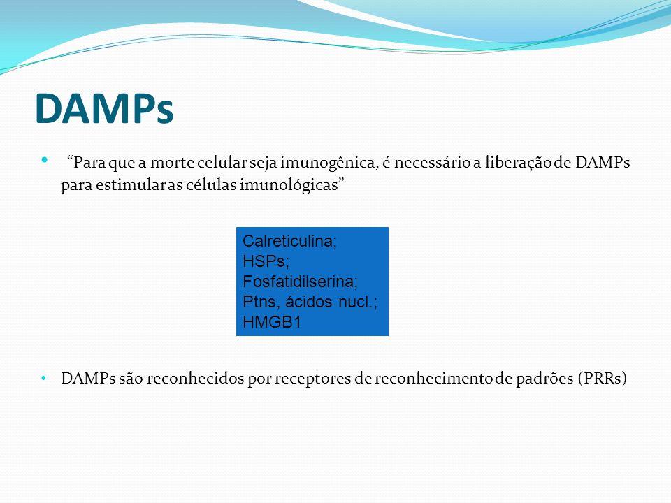 DAMPs Para que a morte celular seja imunogênica, é necessário a liberação de DAMPs para estimular as células imunológicas