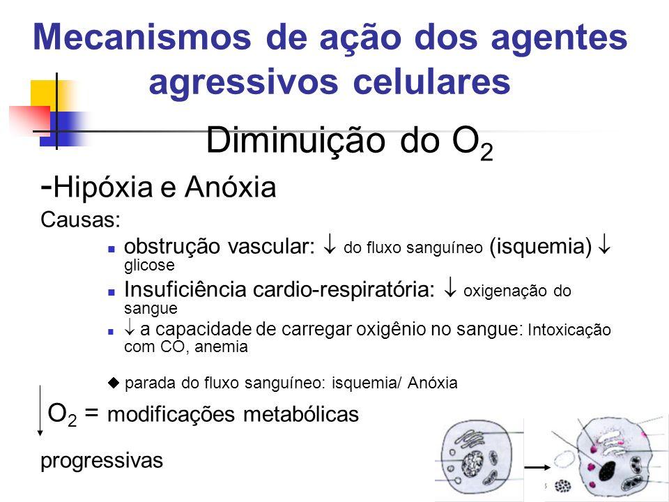 Mecanismos de ação dos agentes agressivos celulares